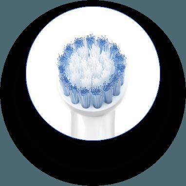 Brush head zoom